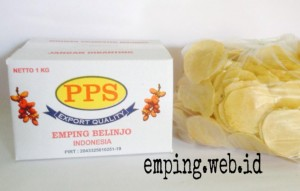 PACKING EMPING SP
